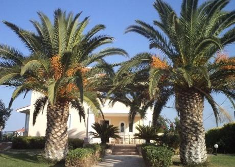 Pool villa near to airport and Rafina port