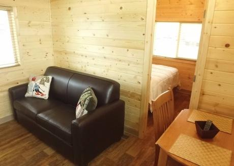Cozy Private Cabin With Resort Amenities!