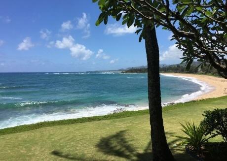 Winter Flash Sale !! Oceanfront Condo on Kauai  #114