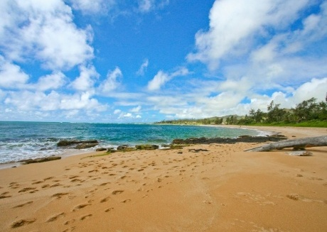 Up to 20% OFF!! Ocean Front Property-Wailua Bay View 1BD #305