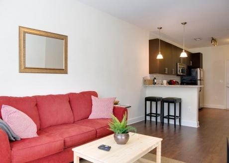 Contemporary 1br apt in Plaza Midwood w/ parking