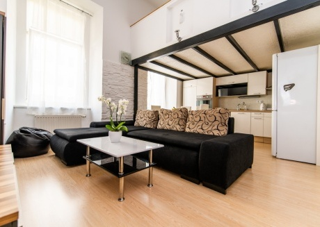 Spacious Design Loft in heart of the city center