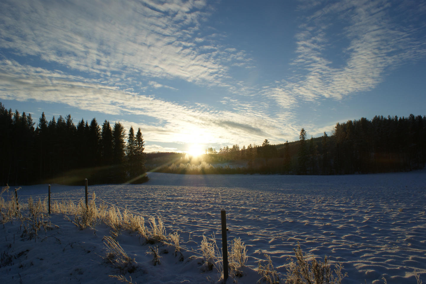 Summer or Winter a magical region of Nystrand h... Slide-2