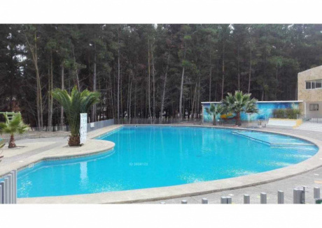 Apartment with pool and forest very close to beach