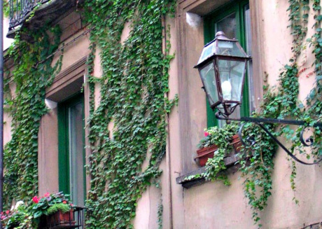 Cozy apartment in the center of Turin with Lift, Parking, Internet, Air conditioning