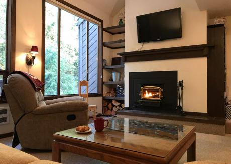 Condo #72- Wifi, Kitchen, Fireplace, SLEEPS-4!