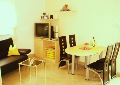 Cozy apartment close to the center of Rovinj with Parking, Internet, Washing machine, Air conditioning