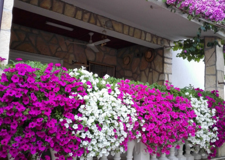 Cozy apartment in Privlaka with Parking, Internet, Air conditioning, Balcony