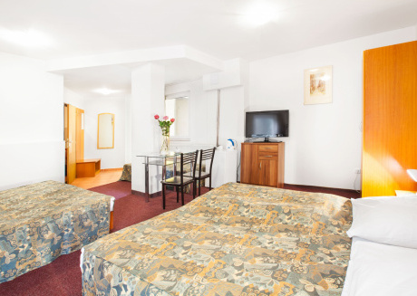 Studio for five Persons in the City center of Prague