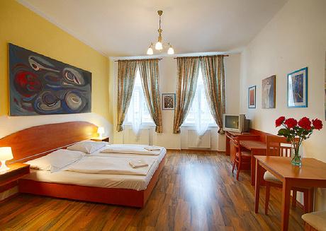 Spacious Apartment in the City center of Prague
