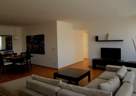 Spacious apartment in Mexico City with Lift, Parking, Internet, Terrace