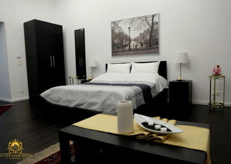 Cozy apartment very close to the centre of Vienna with Internet