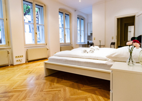 Cozy apartment in the center of Vienna with Internet