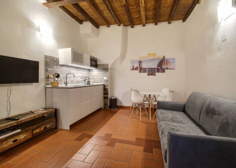 Cozy apartment in the center of Florence with Internet