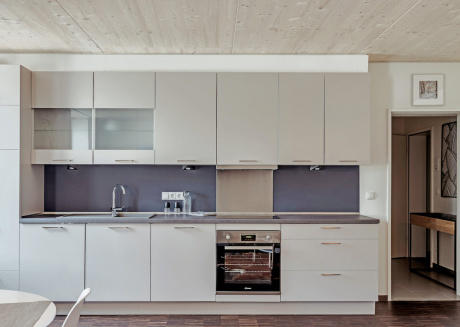 Spacious one bedroom apartment 001