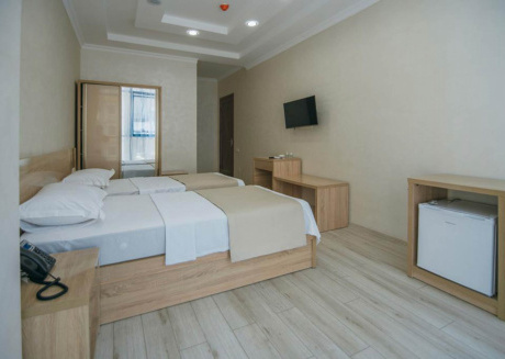 Roam the city of Batumi all day and return to your modern room