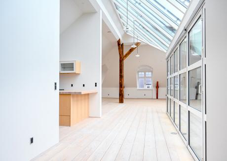 Fantastic Spacious Apartment in Copenhagen