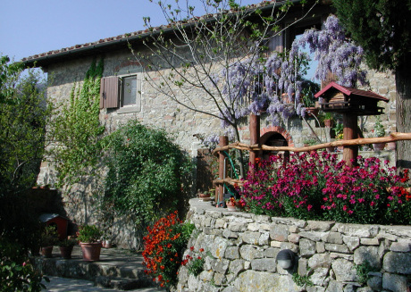 Country Farm Holidays in Tuscany - Apartment for rent in the tuscan countryside