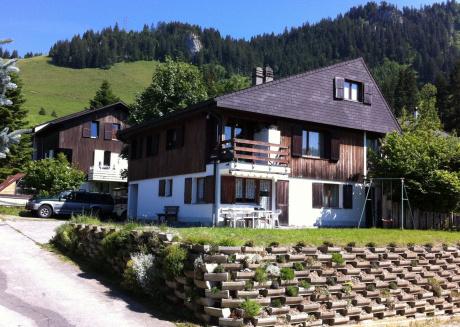 Luxurious Apartment in Wirzweli near Forest