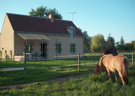Fine holiday home in the surroundings of Vitry-aux-Loges near large swimming lake