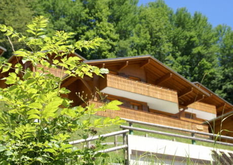 Spacious chalet with breathtaking panoramic views of Chatel and the valley
