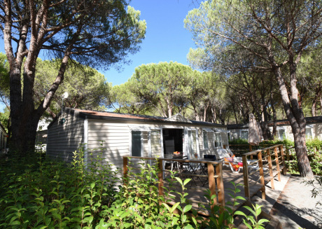 Cottages in subtropical paradise