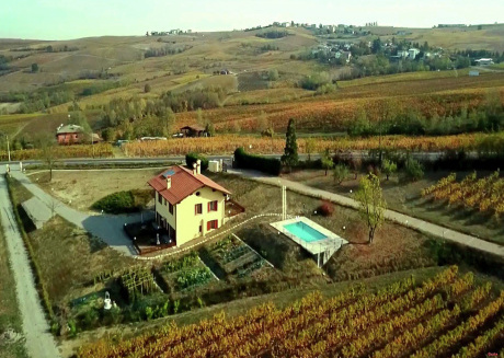Among hills and vineyards, apartment in villa with swimming pool and terrace