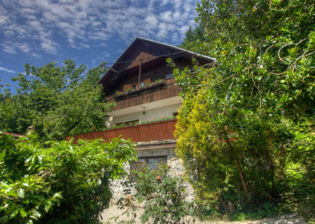 Detached house with garden, terrace and BBQ, 300 meters from Lake Bled