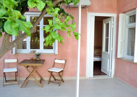 Lemon Tree-Standard Studio 2